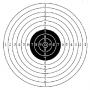 Koulutaulu pistooli 550x550mm